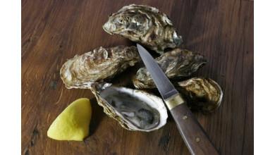 Lancette à huîtres