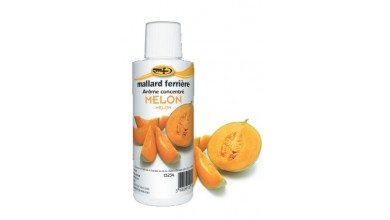 Concentrated food aroma Melon 125ml
